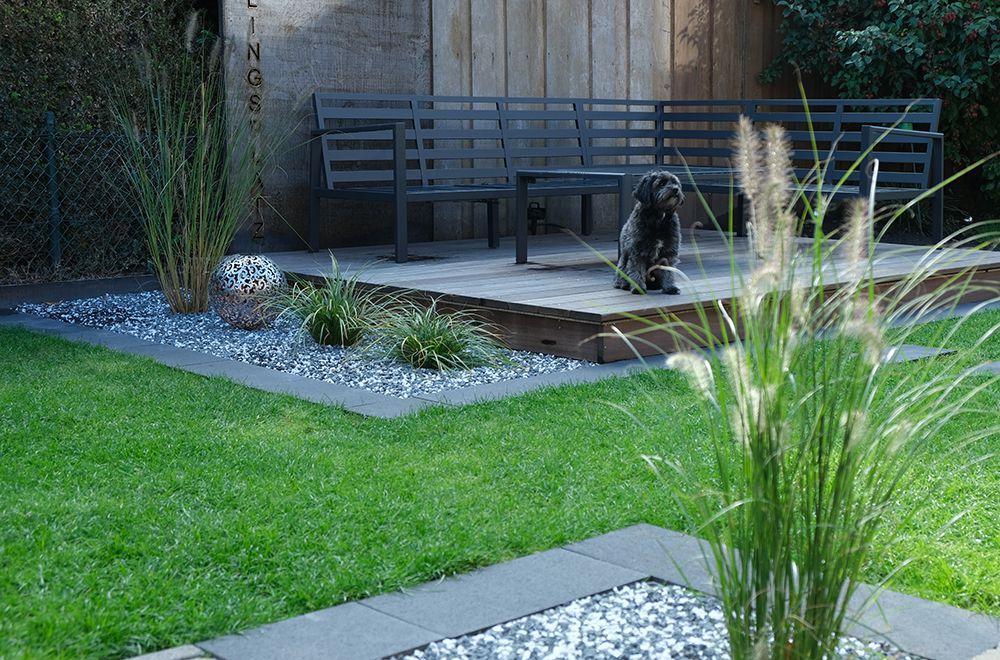 Kleiner Garten Sichtschutz Pflanzen