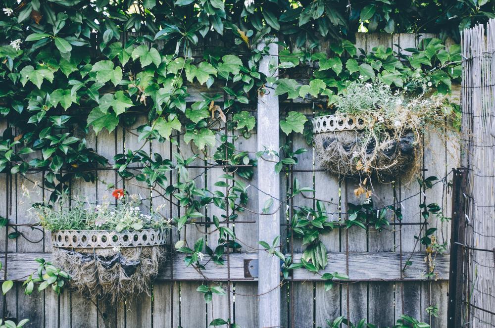 Kreative Ideen Sichtschutz Garten Günstig