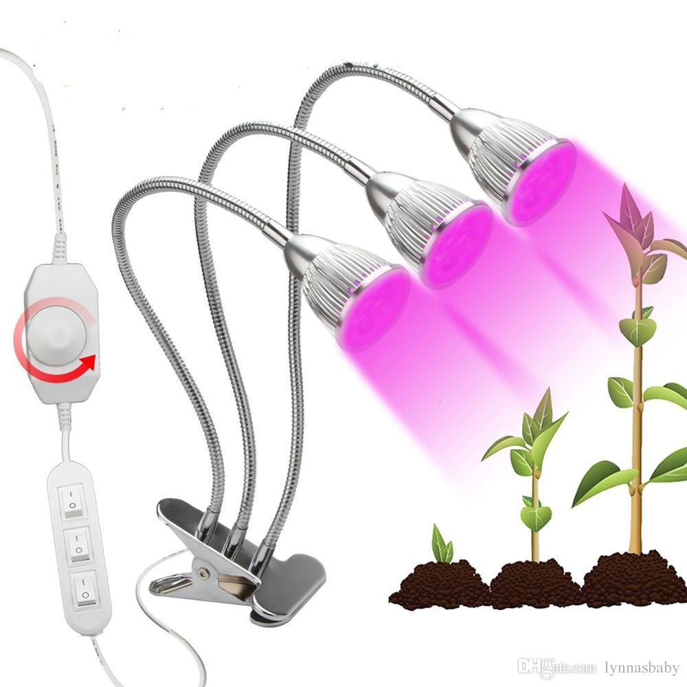 Lampe Für Pflanzen