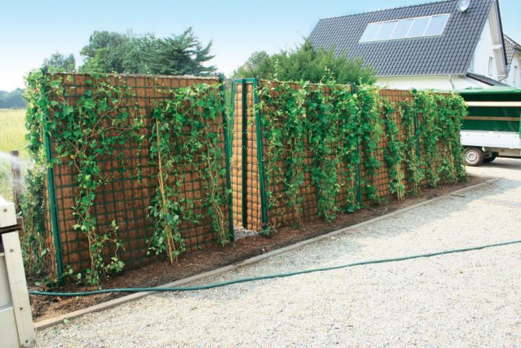 Lärmschutz Garten Erfahrungen