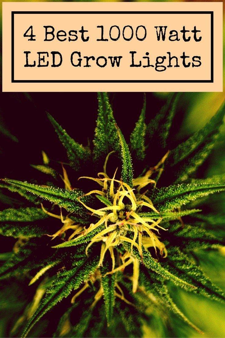 Led Grow Lampe 1000 Watt