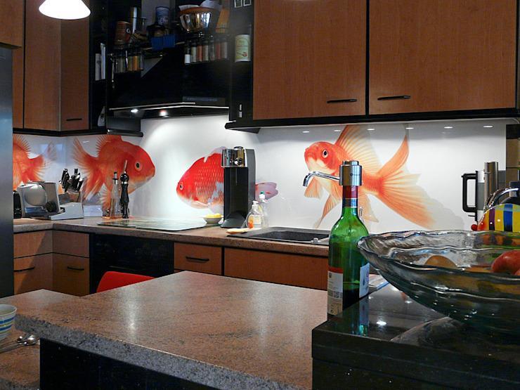 Motive Küchenrückwand Plexiglas