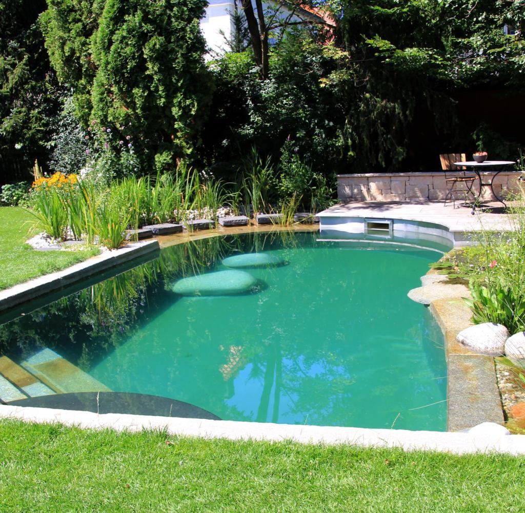 Natur Schwimmteich Bauen