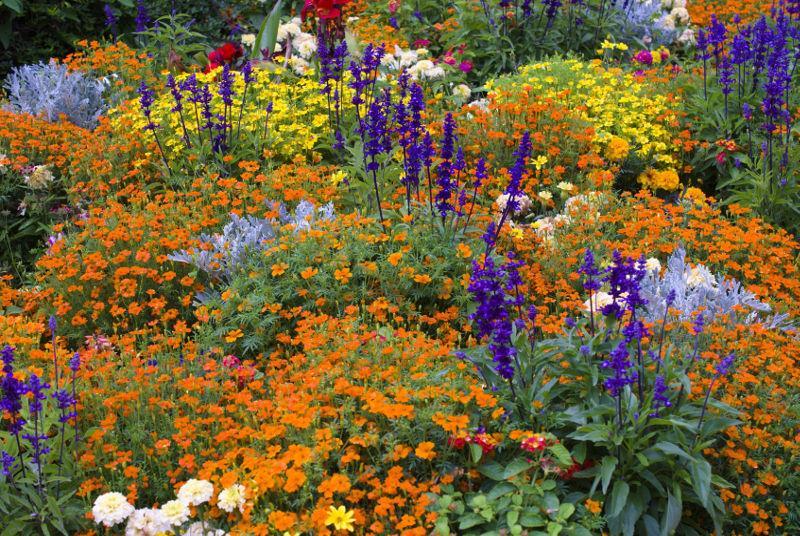 Naturgarten Gestalten Naturgarten Anlegen