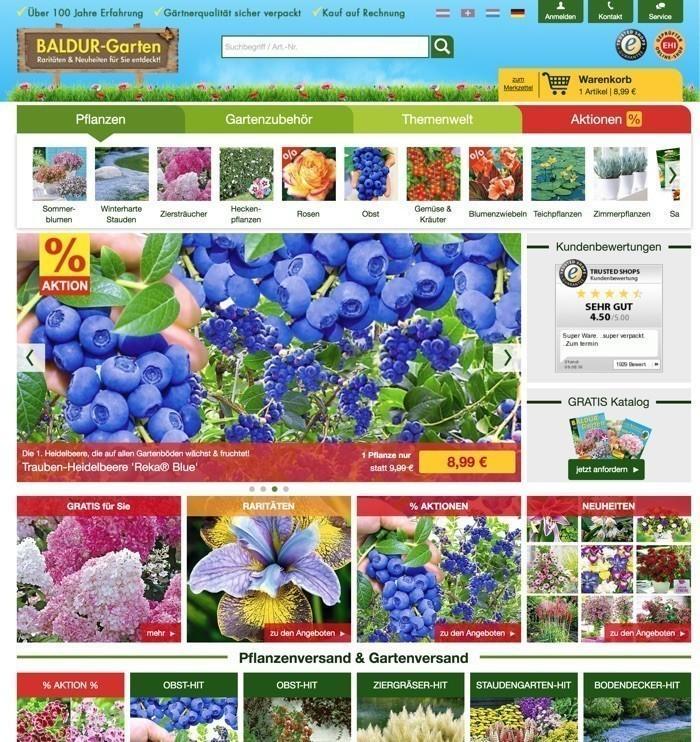 Pflanzen Baldur Garten