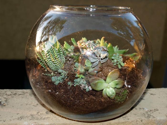 Pflanzen Im Glas Ideen