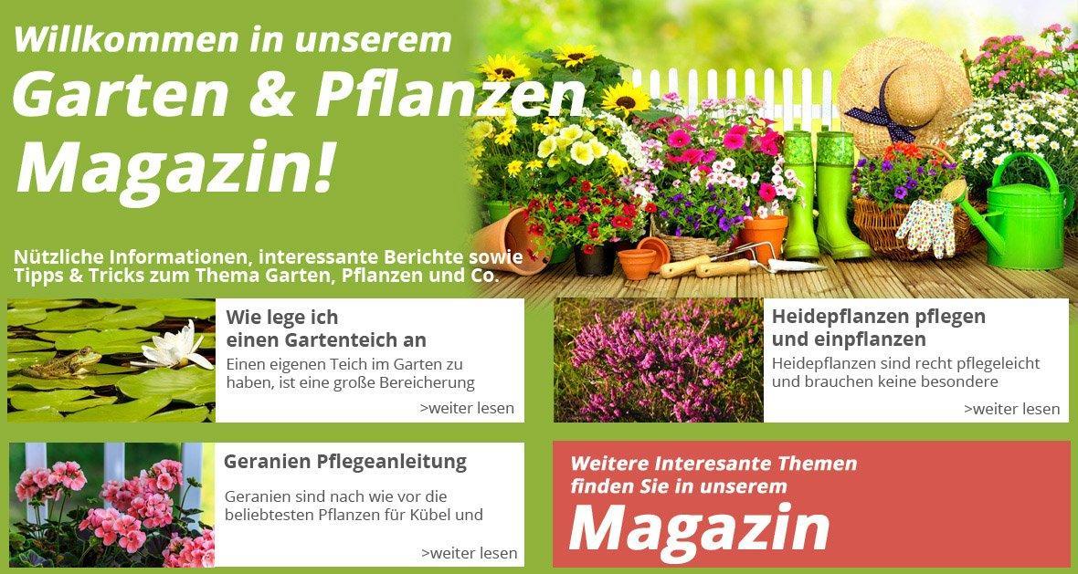 Pflanzen Online Kaufen Deutschland