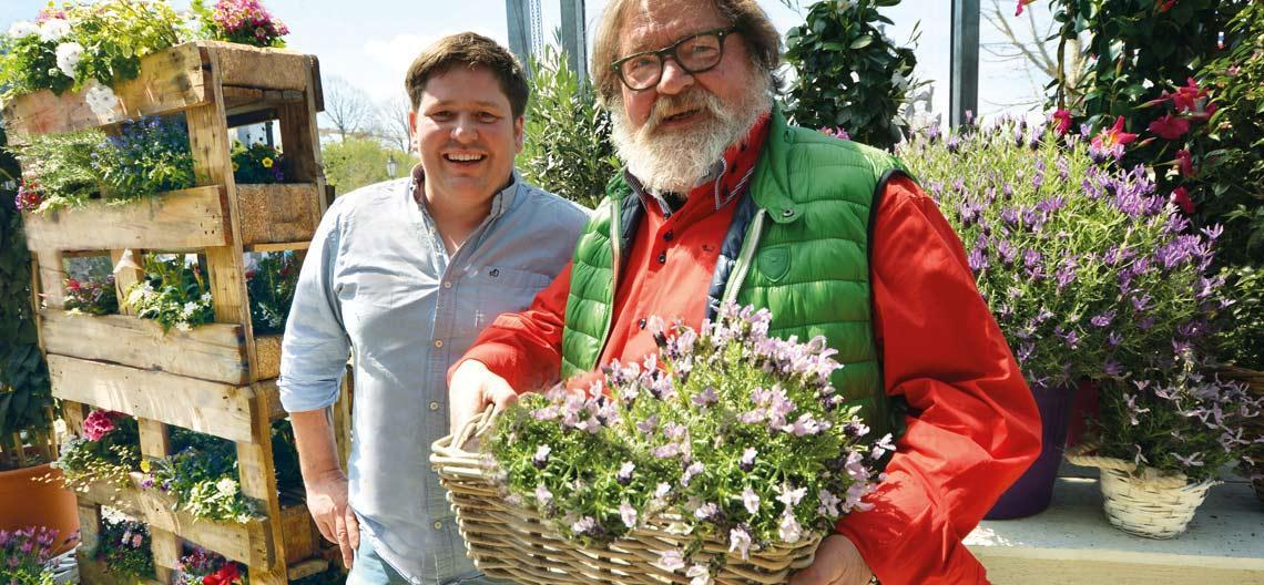 Pflanzen Online Kaufen München