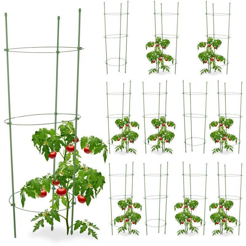 Pflanzstäbe Für Zimmerpflanzen