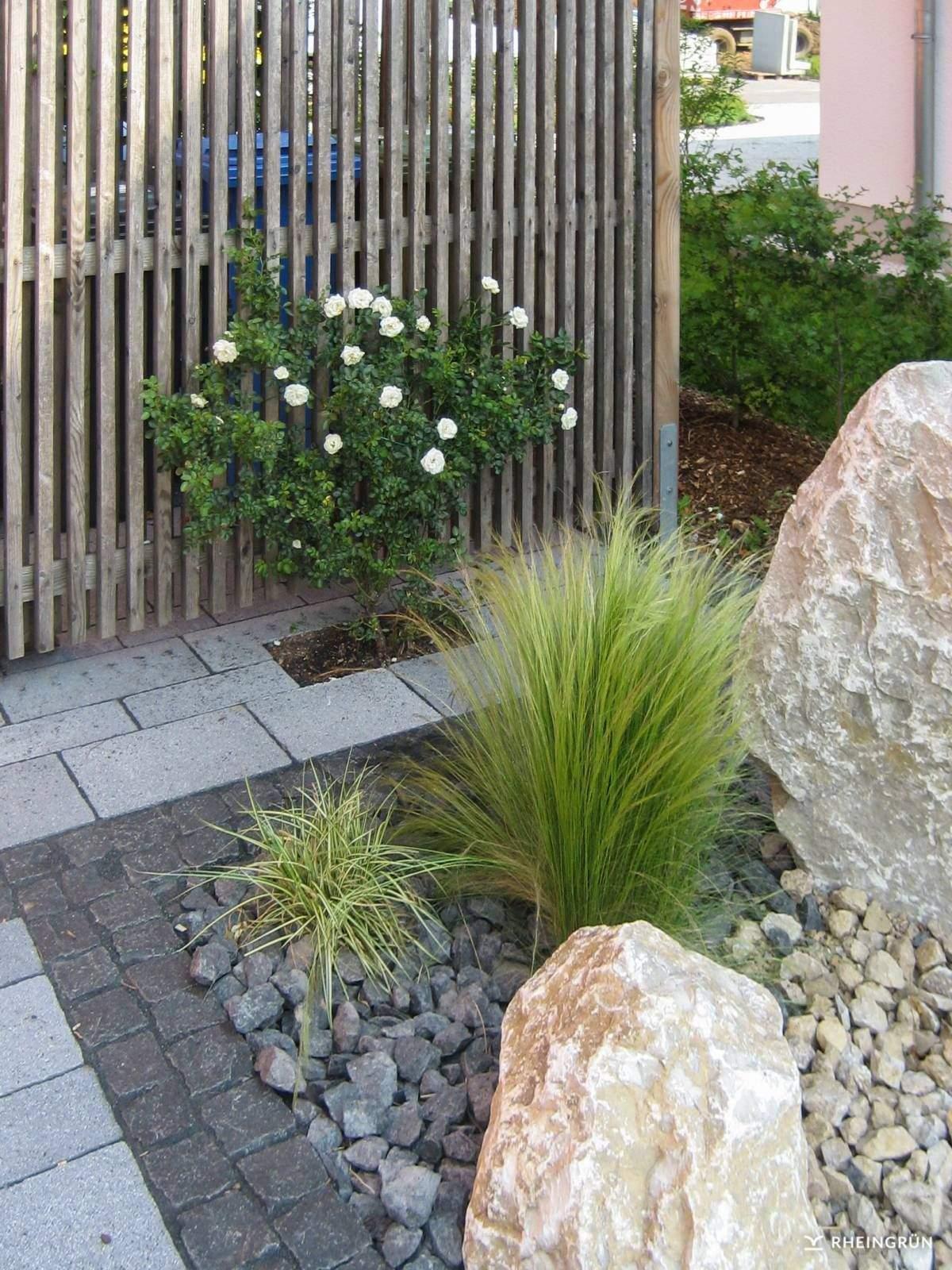 Pflegeleichter Garten Ohne Rasen