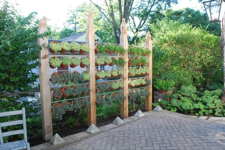 Sichtschutz Mit Pflanzen Im Garten