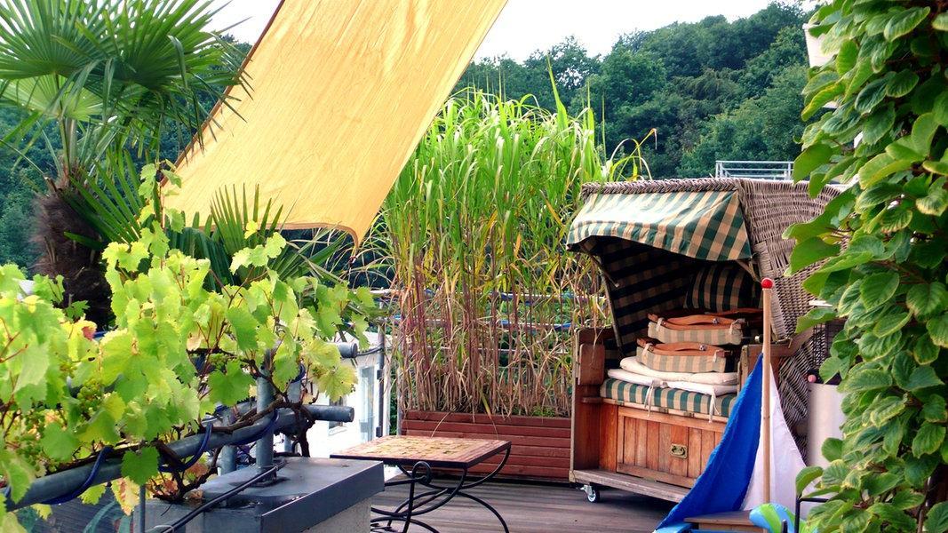 Sichtschutz Mit Pflanzen Terrasse