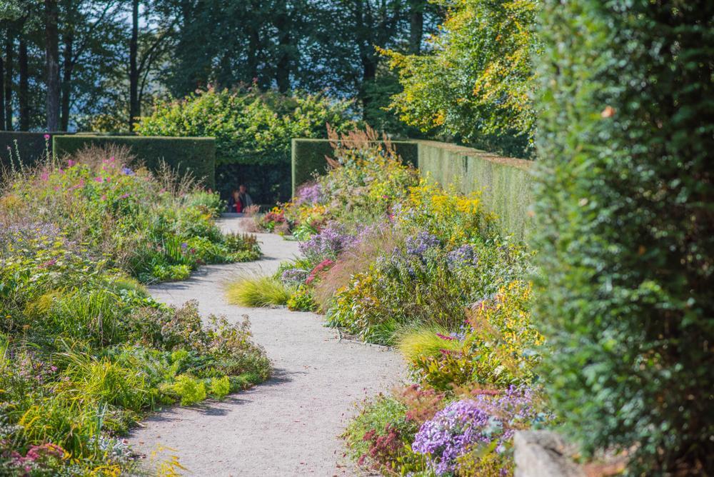Sträucher Garten Anlegen