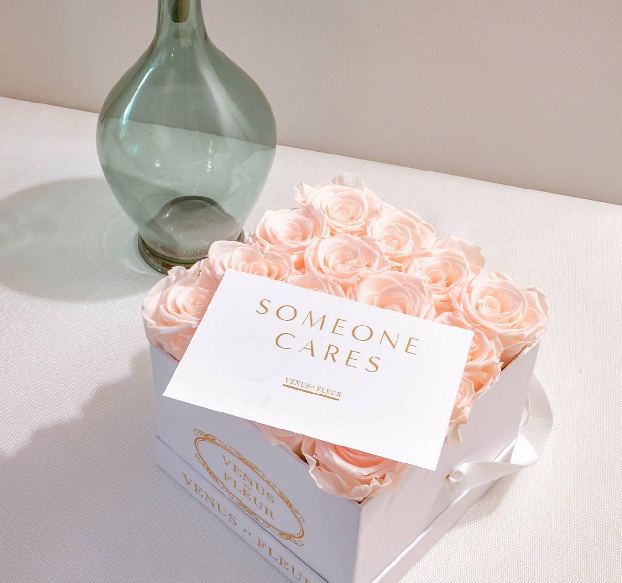 Venus Et Fleur Gardenia