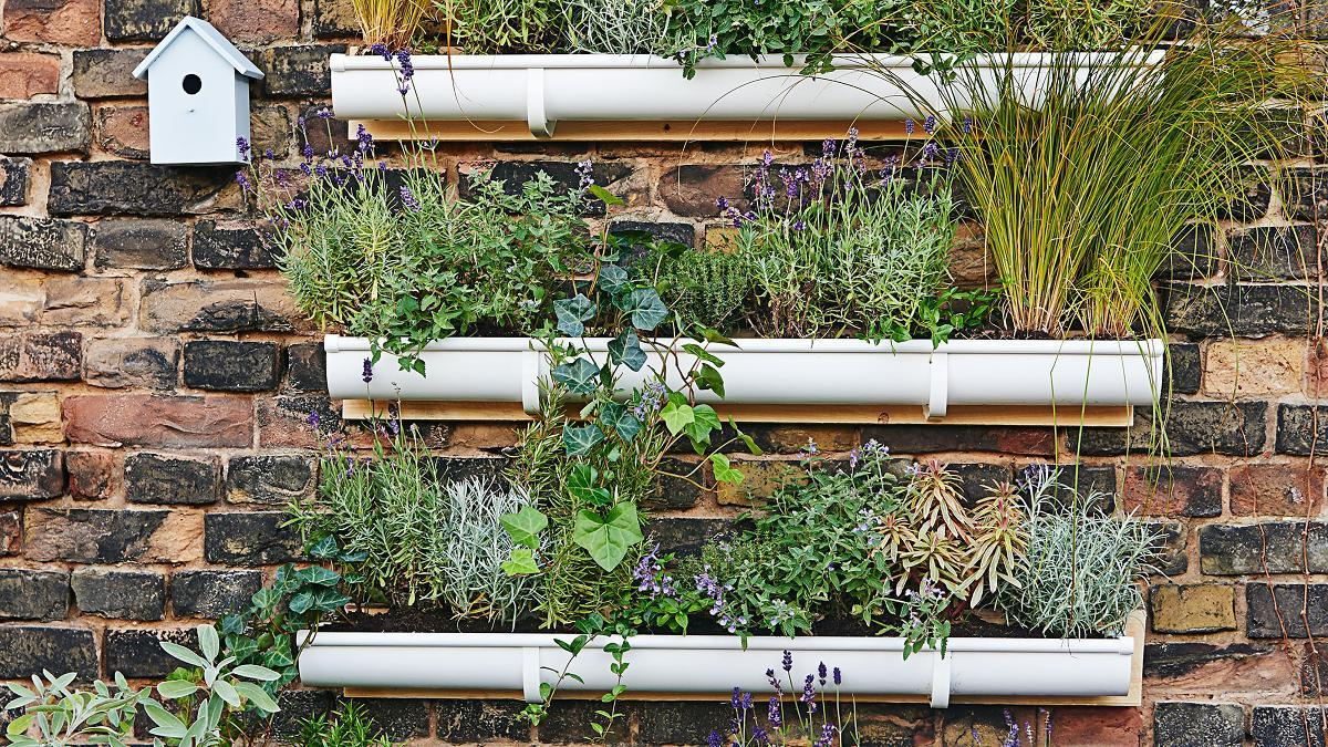 Vertikaler Garten Balkon Diy