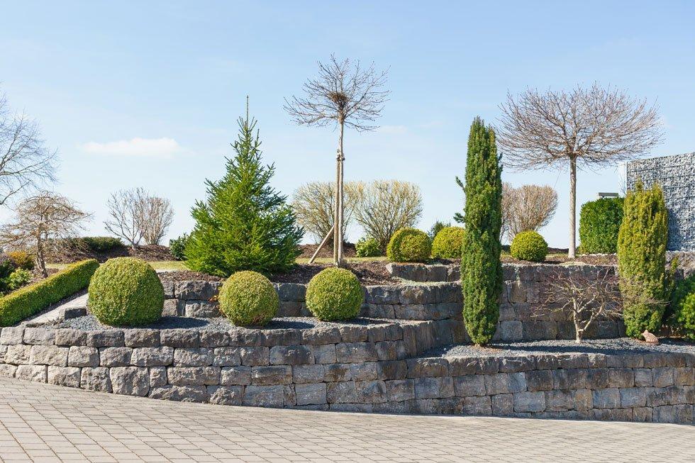 Vorgarten Pflanzen Ideen