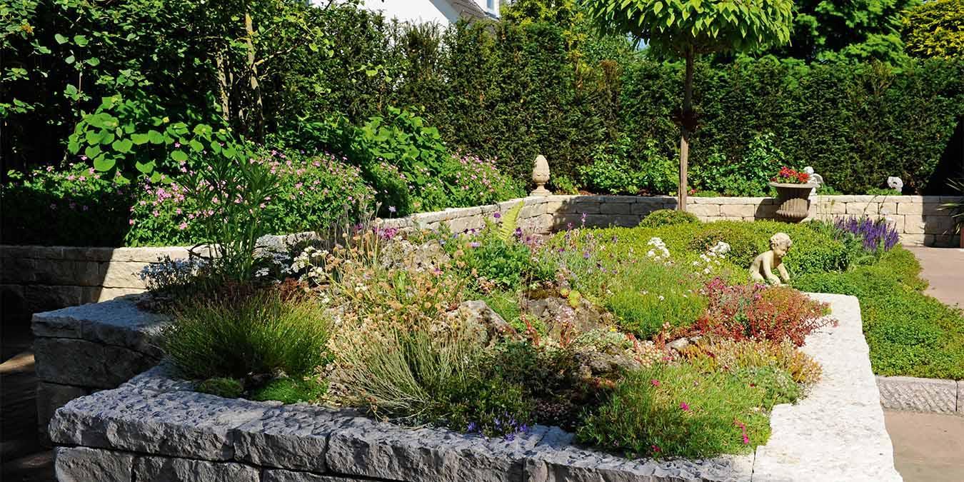 Vorgarten Pflegeleicht Bepflanzen