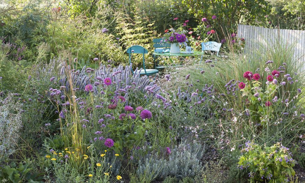 Wilder Garten Ideen