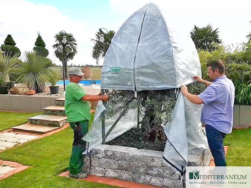 Winterschutzzelt Für Palmen