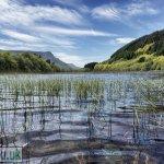 Gwernan Lake and Cader Idris