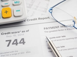 Financial health and credit report