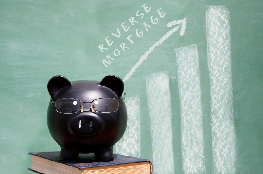 how does a reverse mortgage work to pay your bills