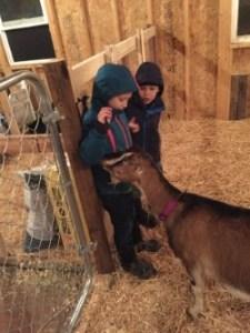 Gabe & Luke meet Pepper