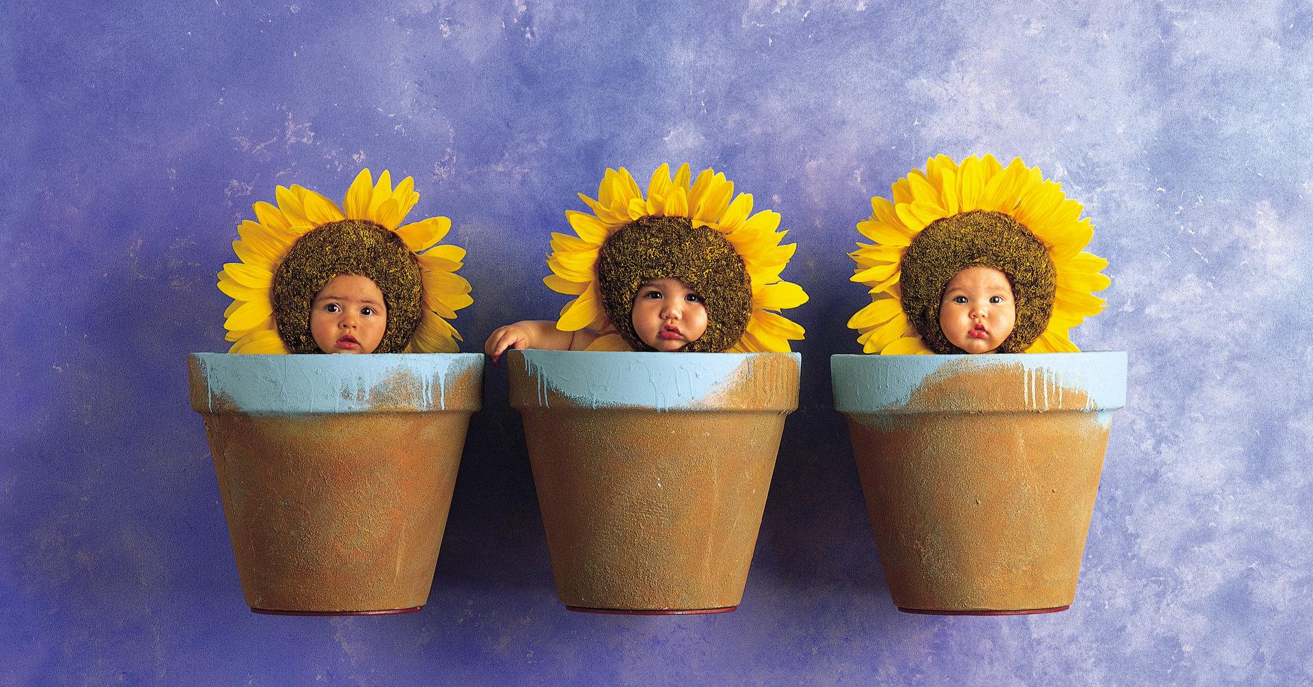 El mundo de Anne Geddes y sus bebés
