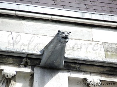 Gárgola de la Catedral de Cork (Irlanda)