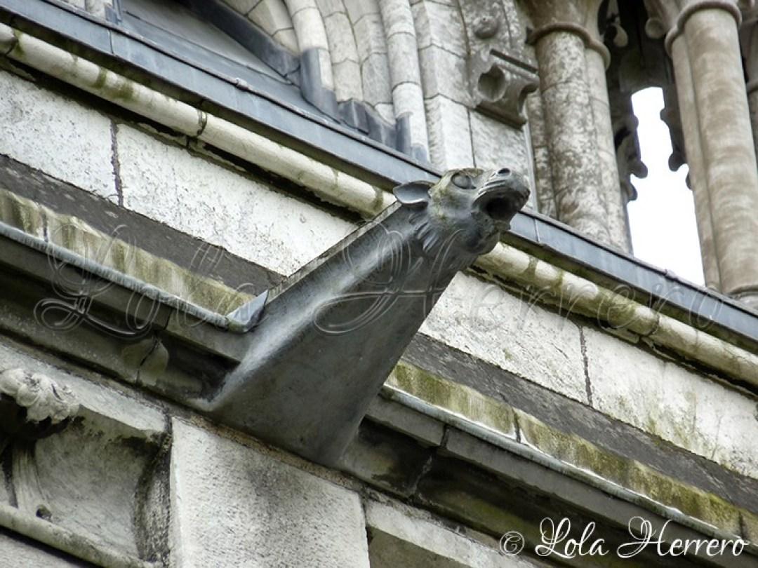 Gárgola Catedral Cork (Irlanda) 161