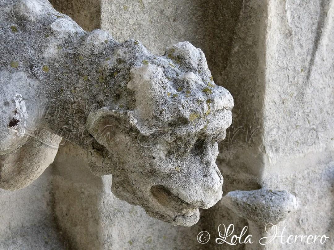 Gárgola Catedral Burgos 61