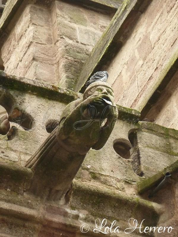 Gárgola Catedral Rodez (Francia) 74