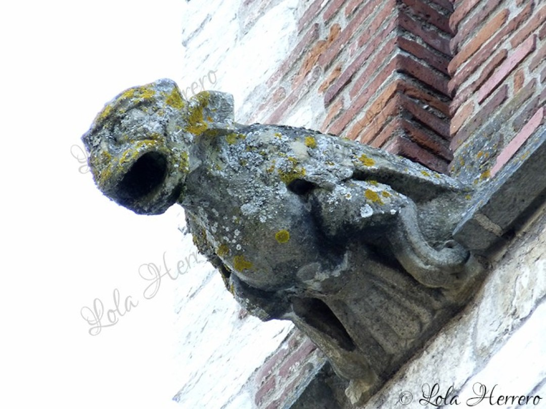 Gárgola Catedral Cahors (Francia) (362)