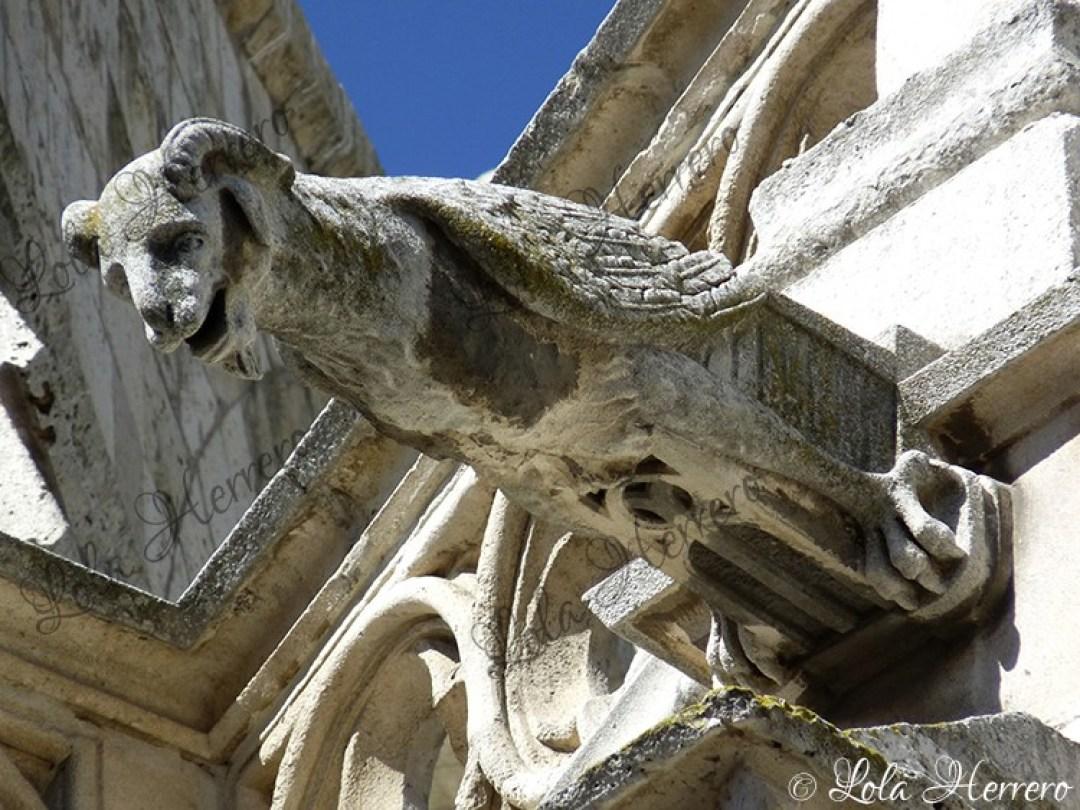 Gárgola Catedral Palencia (367)