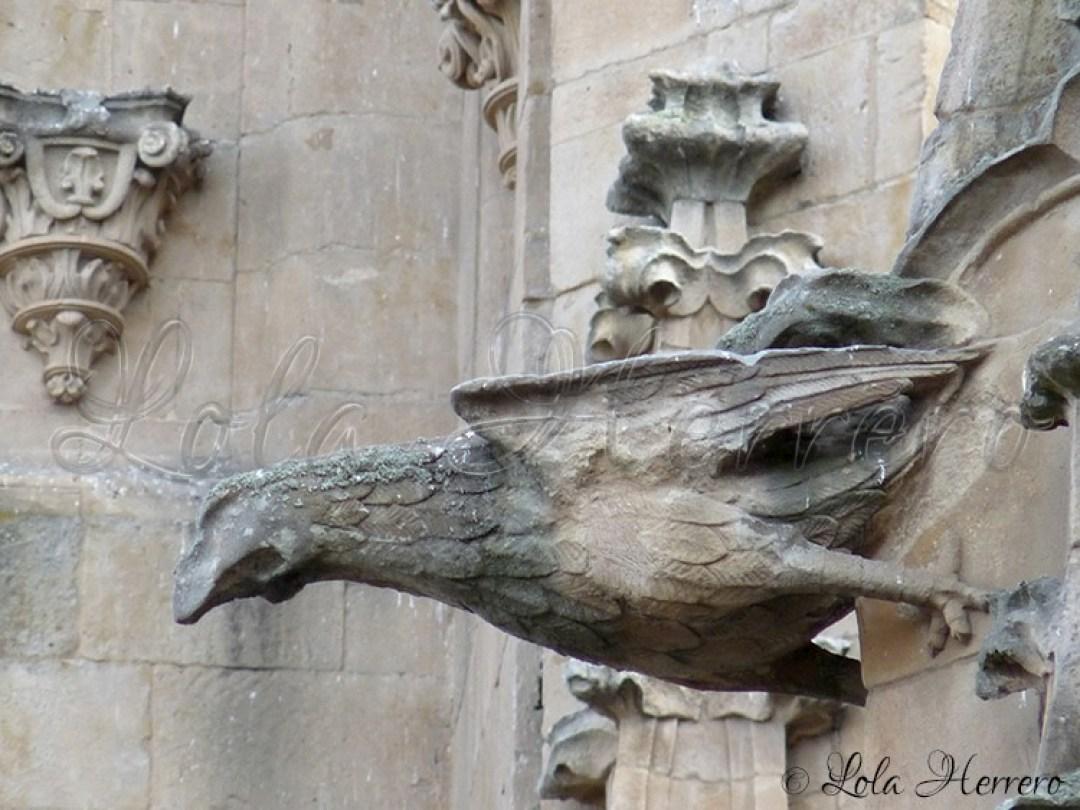 Gárgola Catedral Salamanca (316)