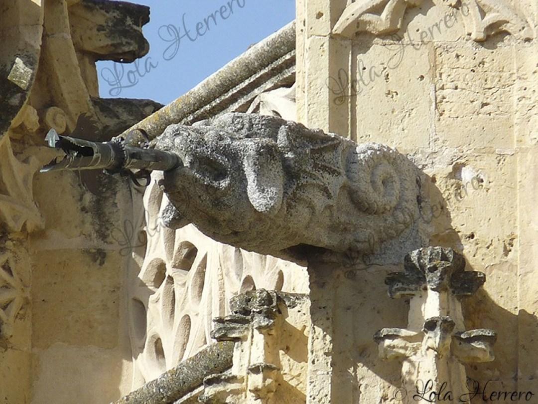 Gárgola Catedral Segovia (436)