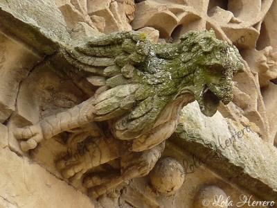 Gárgola del Convento de las Úrsulas (Salamanca)