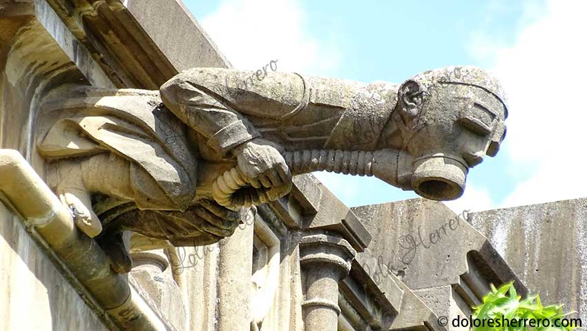 gárgola catedral investigación