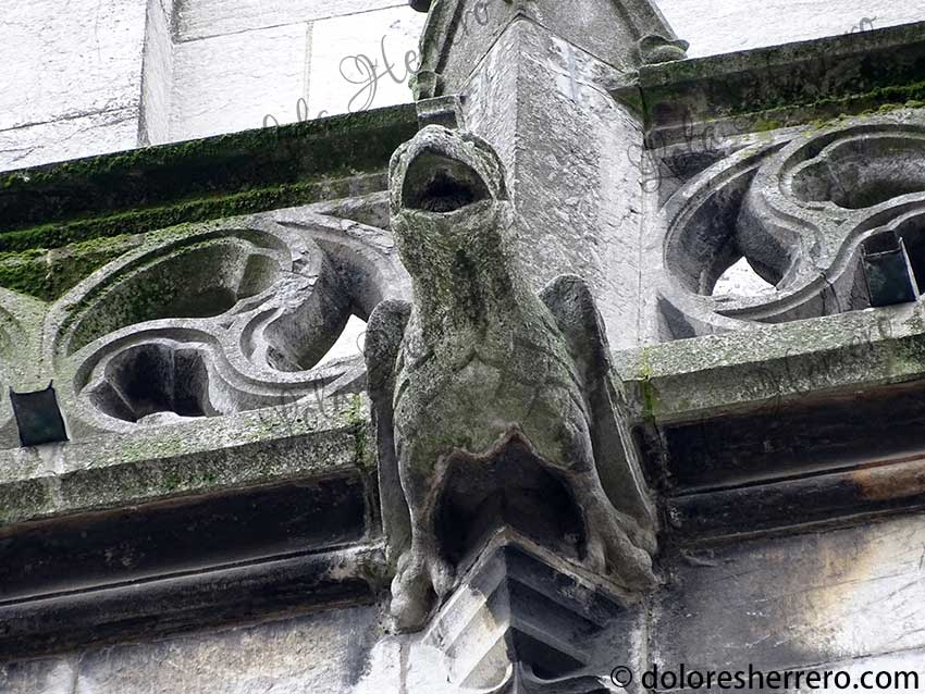 El águila y su representación en las gárgolas