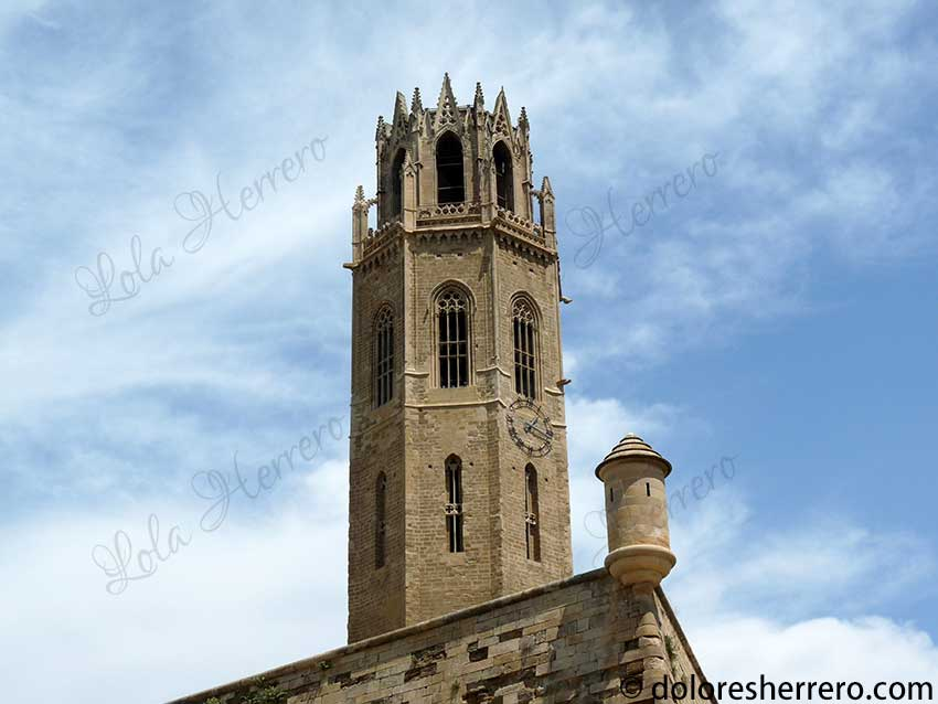 Gárgolas de la Seu Vella de Lleida