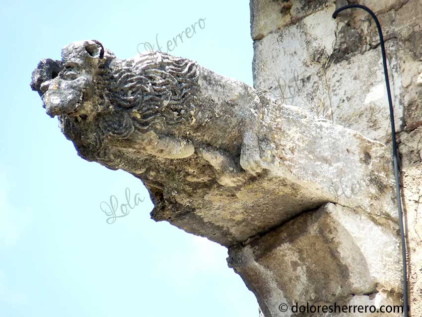 The Lion and its Portrayal in Gargoyles