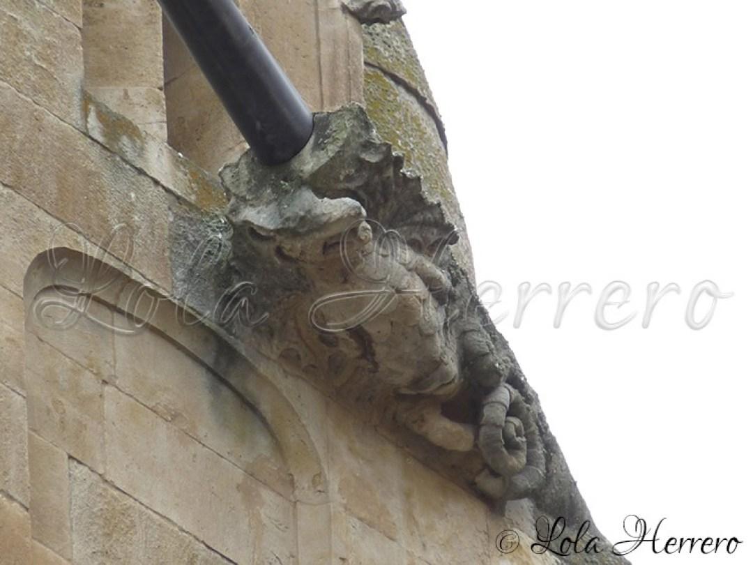 Gárgola Catedral Salamanca 207
