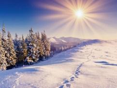 Холодные лучи зимнего солнца