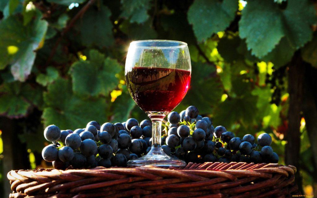 Домашнее вино из винограда. Бокал вина и виноград фото