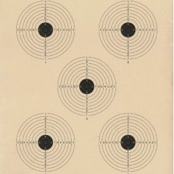AR-4/5 - 5 Meter Air Rifle Five Bullseye Official NRA Target