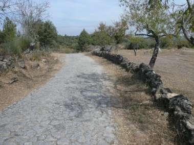 Photos - Chemin du Domaine du Viala