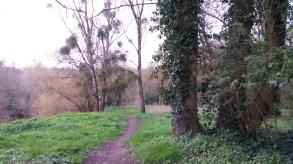 randonnée bords de sèvre