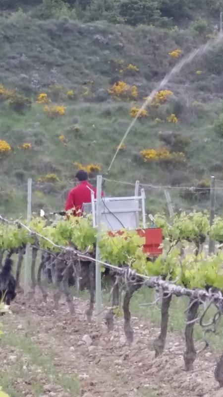 Vins en Biodynamie Ardèche
