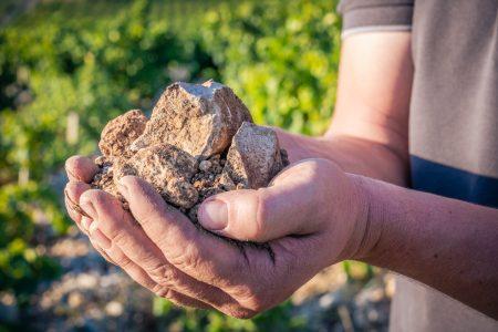 Terroir des Côtes du Rhône Méridional