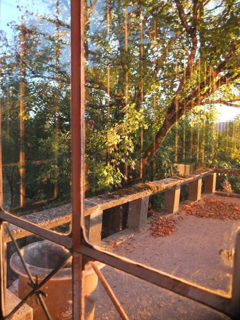 Autumn View Orangery
